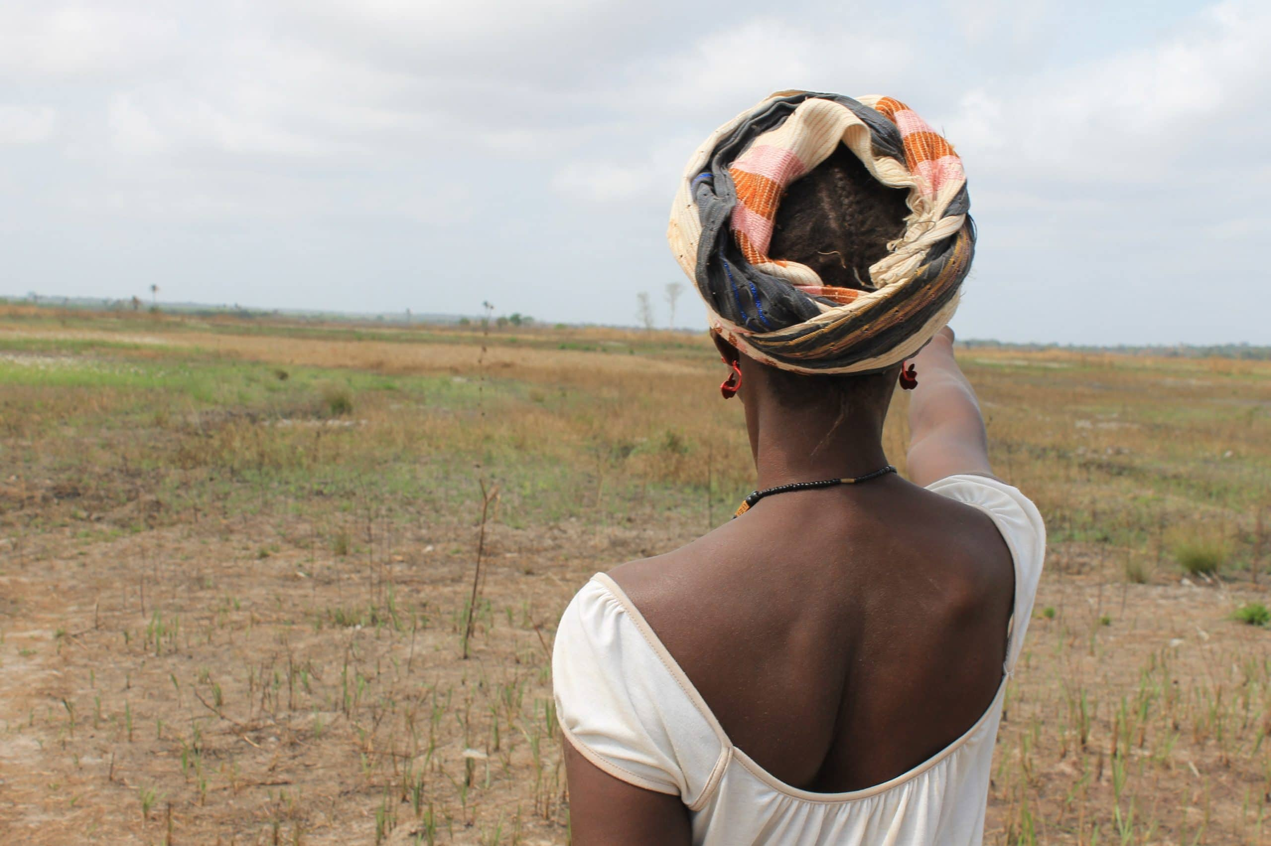 The Addax Bioenergy project in Sierra Leone was part funded by European development finance institutions and negatively impacted local communities' access to land and water.